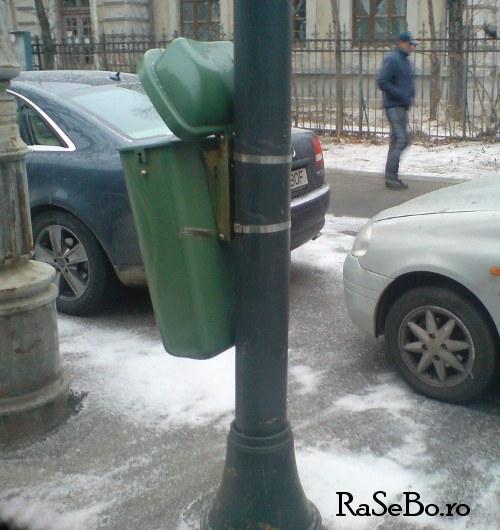 iarna-buc